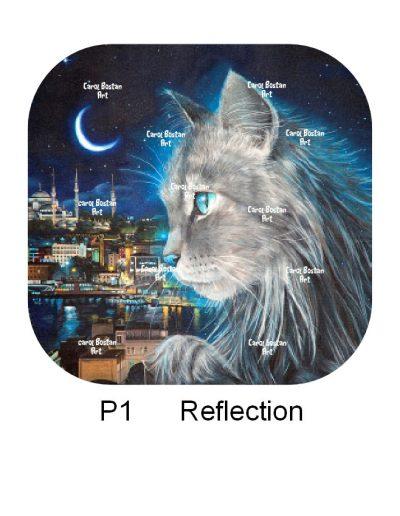 P1-Reflection