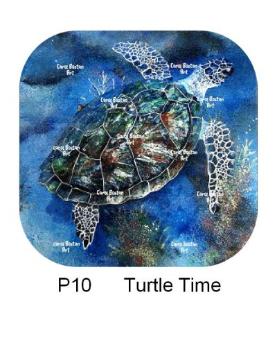 P10-Turtle-Time