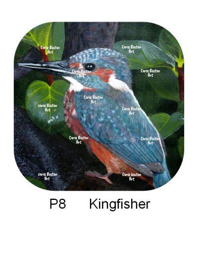 P8-Kingfisher